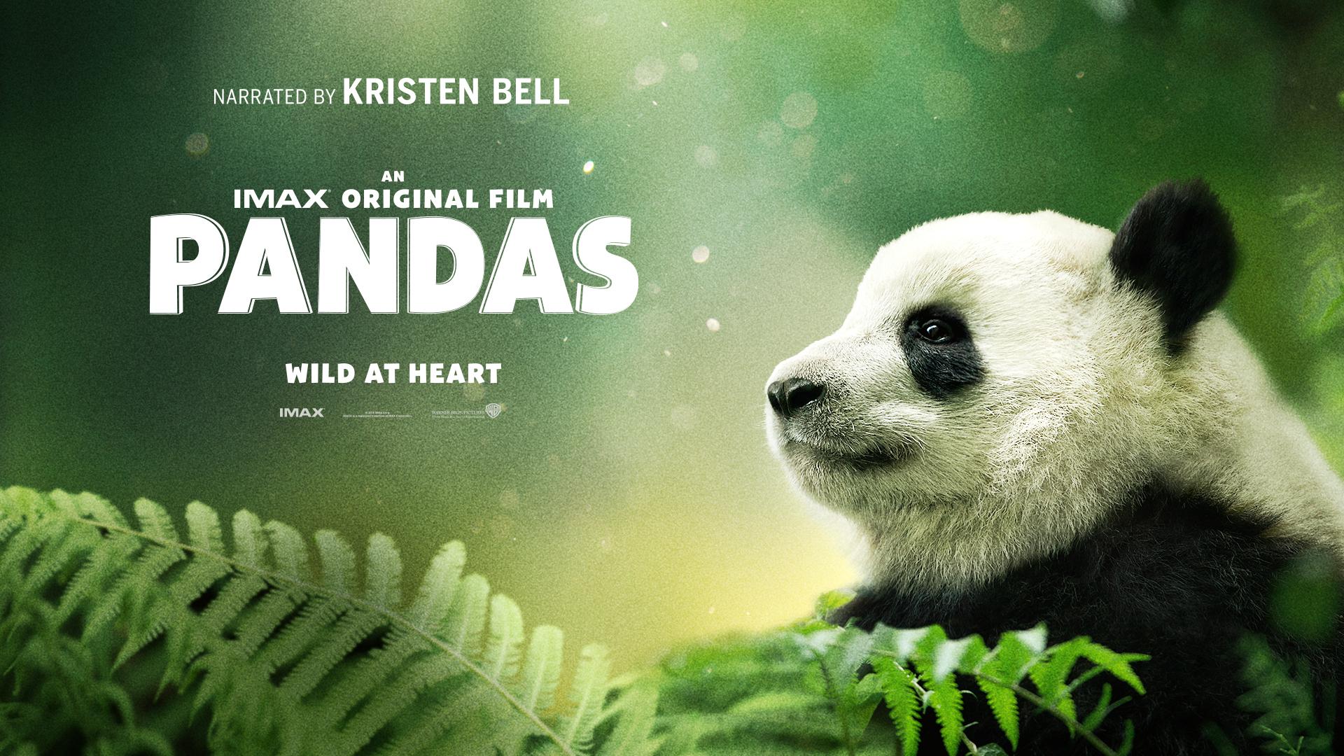 IMAX Pandas Review